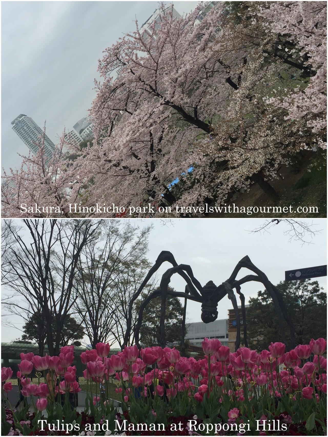 PCasa GT Tokyo, Sights1